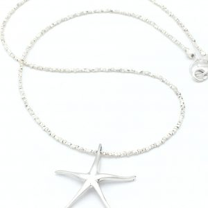 Sea-star-product-image
